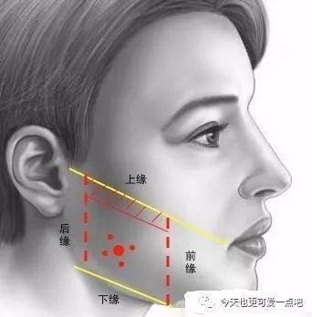 瘦脸针一针的剂量_瘦脸篇之瘦脸针
